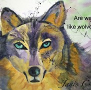 Are we like wolves