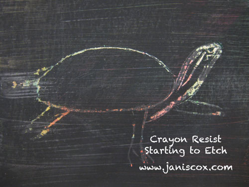 Crayon Resist Tadeo Turtle Starting to Etch