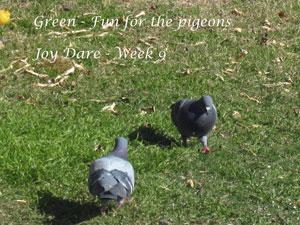 Green Gifts - Joy Dare