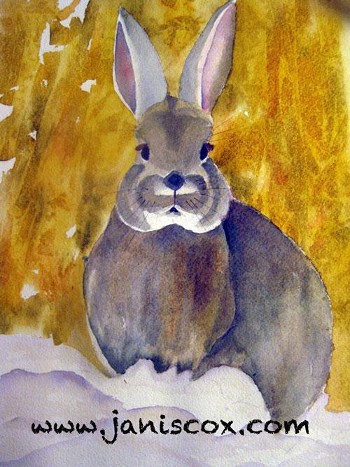 Bunny - Janis Cox