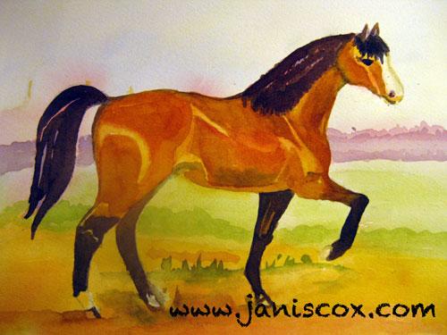 Horse - Janis Cox