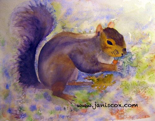 Squirrel - Janis Cox
