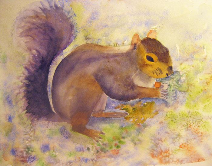 squirrelweb-ready